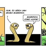 #67 Tirinha de Português
