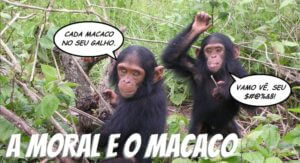 MORAL E MACACO